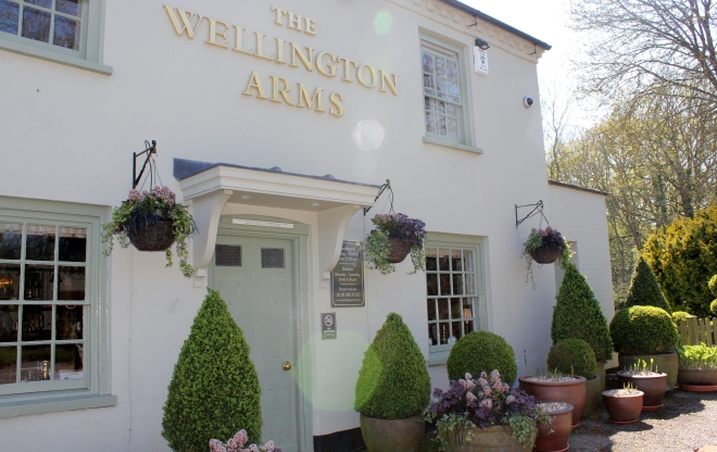 The Wellington Arms in Baughurst has the best pub garden