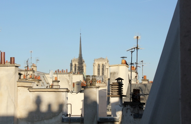 Terrace view at our apartment in the Ile Saint-Louis rooftops, Paris